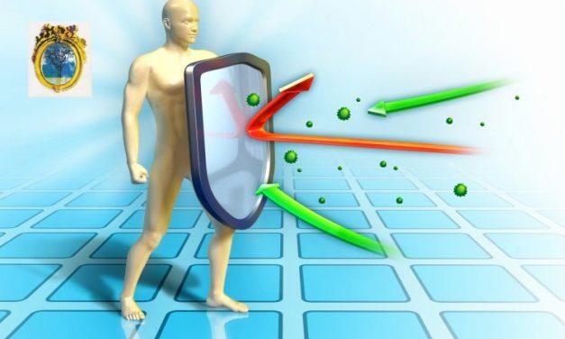 Vești bune. Cele mai  recente cercetări privind răspunsul imunitar la infecția covid 19