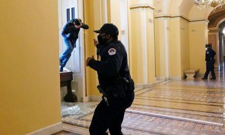 Capitoliu: Neînţeleasa absenţă şi amatorismul forţelor de securitate