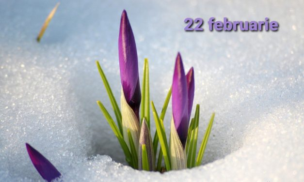 Istoria zilei – 22 februarie