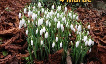 Istoria zilei – 4 martie