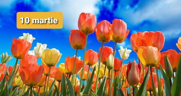Istoria zilei – 10 martie