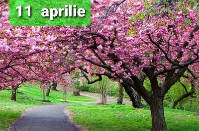 Istoria zilei – 11 Aprilie