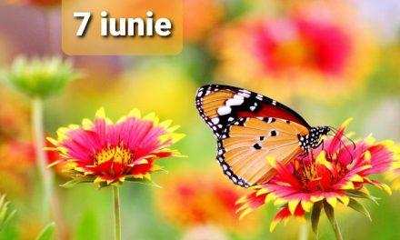Istoria zilei – 7 Iunie