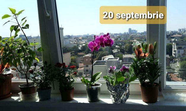 Istoria zilei – 20 Septembrie